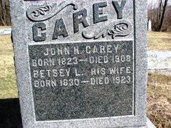John H Carey