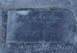 Jerry Lucio Ijames