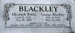 Elizabeth White <i>Christmas</i> Blackley