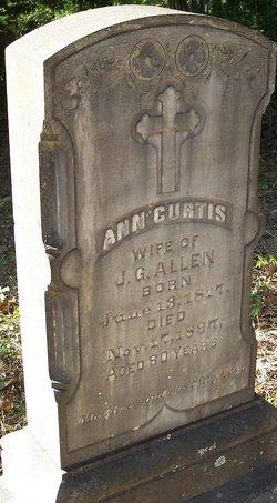 Ann <i>Curtis</i> Allen