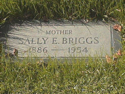 Sally Elizabeth <i>Young</i> Briggs