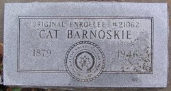 Cat Barnoskie