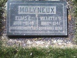 Willetta E <i>Swasey</i> Molyneaux