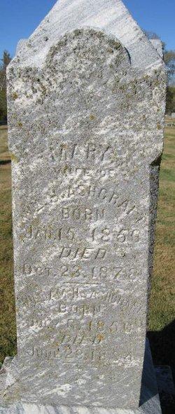 Mary <i>Dooley</i> Ashcraft