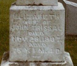 Elizabeth <i>Hubler</i> Trissal
