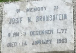 Josif N. Brunshtein