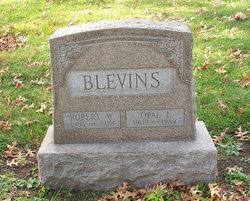 Robert William Blevins