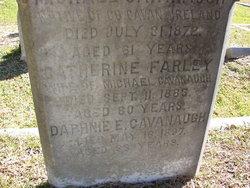 Catherine <i>Farley</i> Cavanaugh