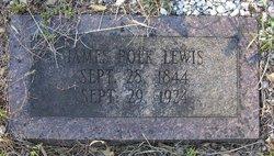 James Polk Lewis