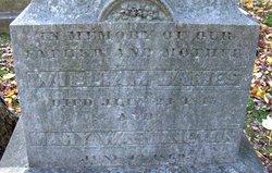 Mary <i>Washington</i> James