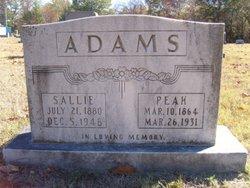 Peleg M. Peak Adams