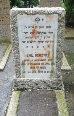 Carl Bercovitz