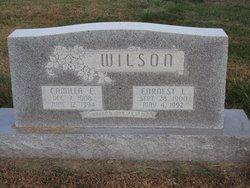 Earnest Levi Wilson