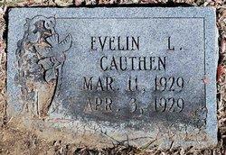 Evelin L Cauthen