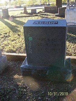 Samuel B Alsop
