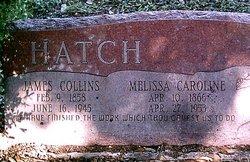 Melissa Caroline <i>Hampton</i> Hatch
