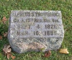 Alpheus Smith Trowbridge