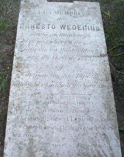 Ernesto Wedekind