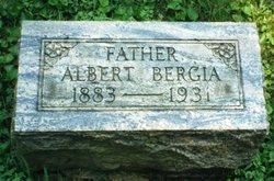 Albert Bergia