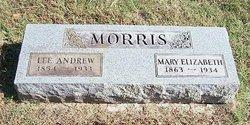 Mary Elizabeth Morris