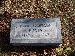 Nancy Elizabeth Lizzie <i>Ammerman</i> Davis