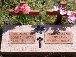 Pleasant Elijah Copeland, Sr