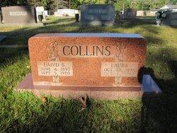 David Solomon Collins