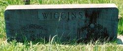 John Jasper Wiggins