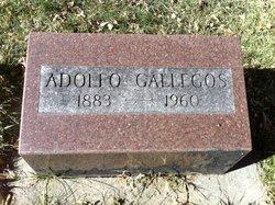 Adolfo Gallegos