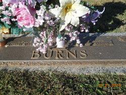 Hollis Burns