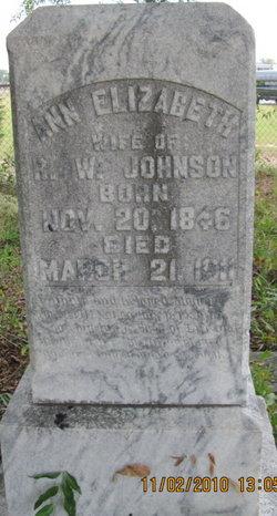 Ann Elizabeth Johnson