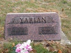 Oart O Yarian