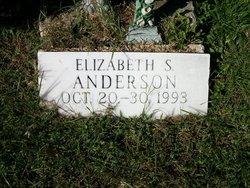 Elizabeth S Anderson