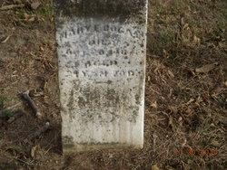 Mary E. Bogan