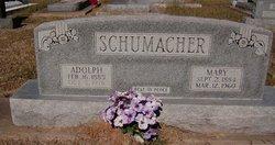 Mary <i>Danchak</i> Schumacher
