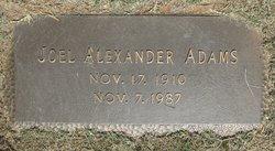 Joel Alexander Adams