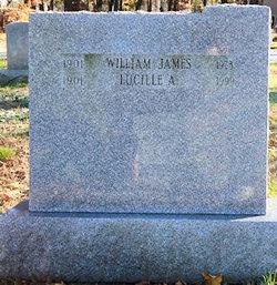 William James Alberts