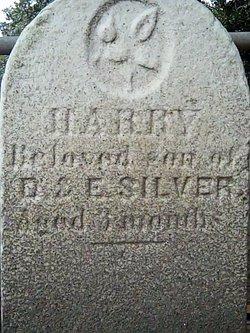 Harry Silver