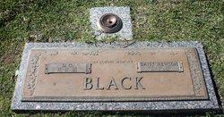 Daisy <i>Newsom</i> Black