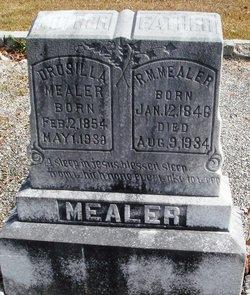 Drusilla <i>Cowart</i> Mealer