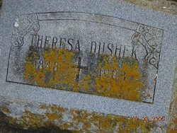Terezie Theresa <i>Janek</i> Dushek