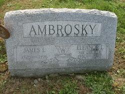 Eleanor E <i>Decker</i> Ambrosky