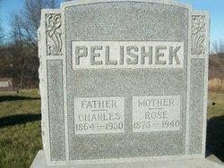 Charles Pelishek
