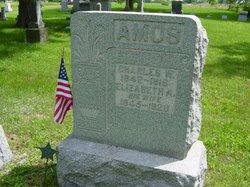 Charles Wesley Amos
