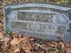 Andrew Jackson Tucker