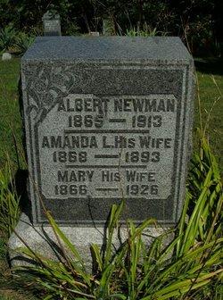 Mary A <i>Callahan</i> Newman