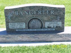 Ilene <i>Turpin</i> Bangerter