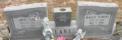 Maggie <i>Flowers</i> Lane