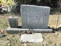 David Wayne Calcote