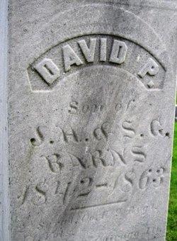 David P Barns